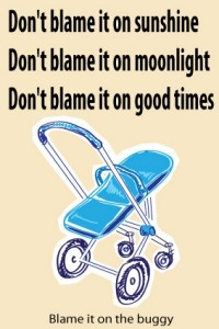 dont blame it onthe moonlight blame itonthe b