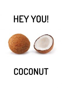 hey you! Coconut (spa coconut)